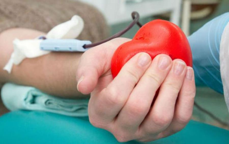Спасая жизни. Кадровый донор Наталья Борисова о важности регулярной сдачи крови