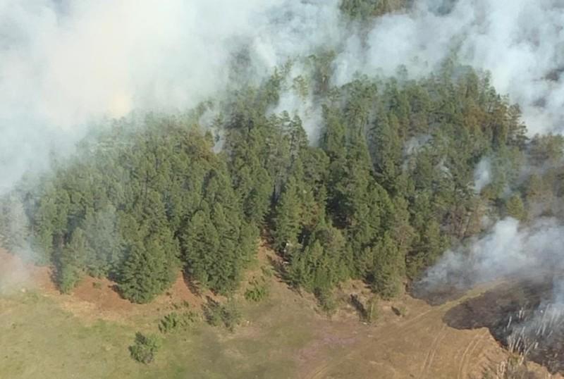 В Намском улусе вспыхнул лесной пожар