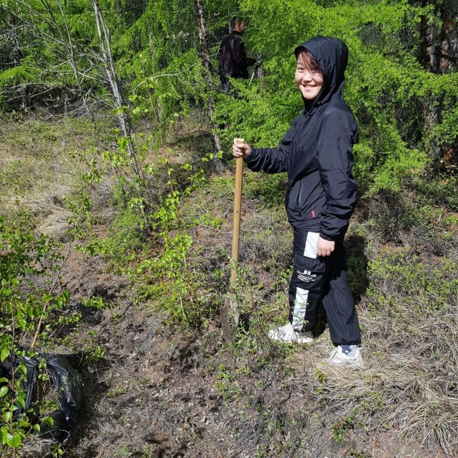 В Усть-Нере к 60-летнему юбилею ДК «Металлург» посадили березы