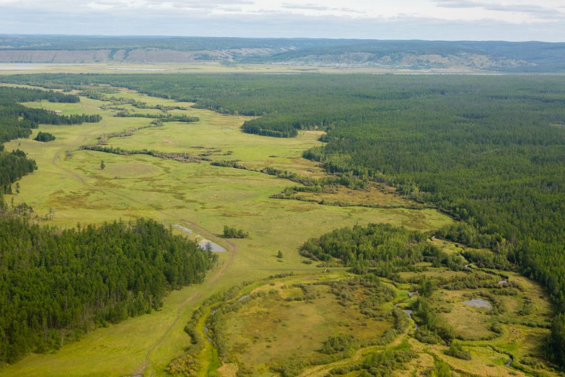 Минэкологии Якутии: На территории республики принимаются меры по тушению 9 лесных пожаров