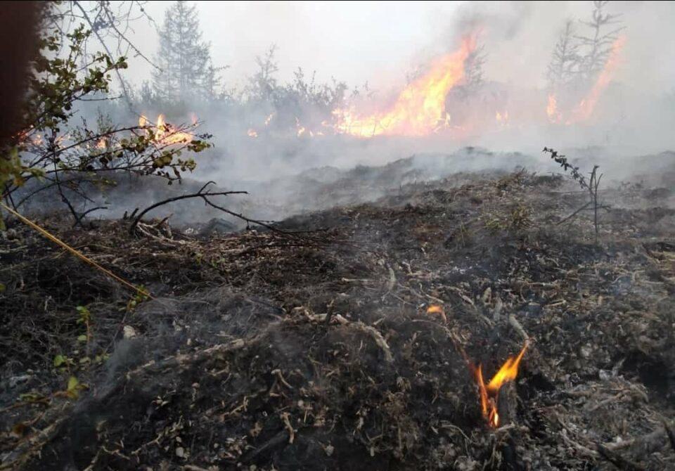 В тушении лесных пожаров в Хангаласском районе задействованы 530 человек и 55 единиц техники