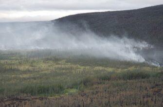 Работу по тушению лесных пожаров в Якутии будет координировать МЧС России