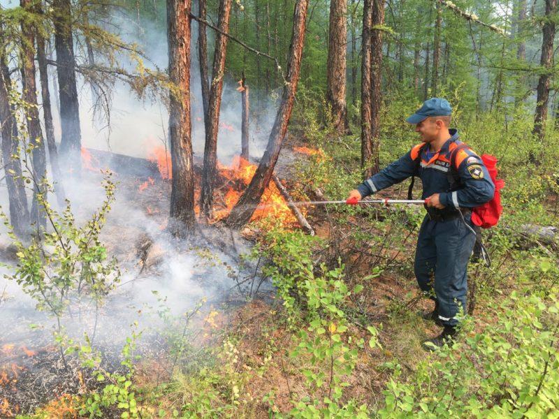 В этом году в Якутии было возбуждено два уголовных дела по лесным пожарам