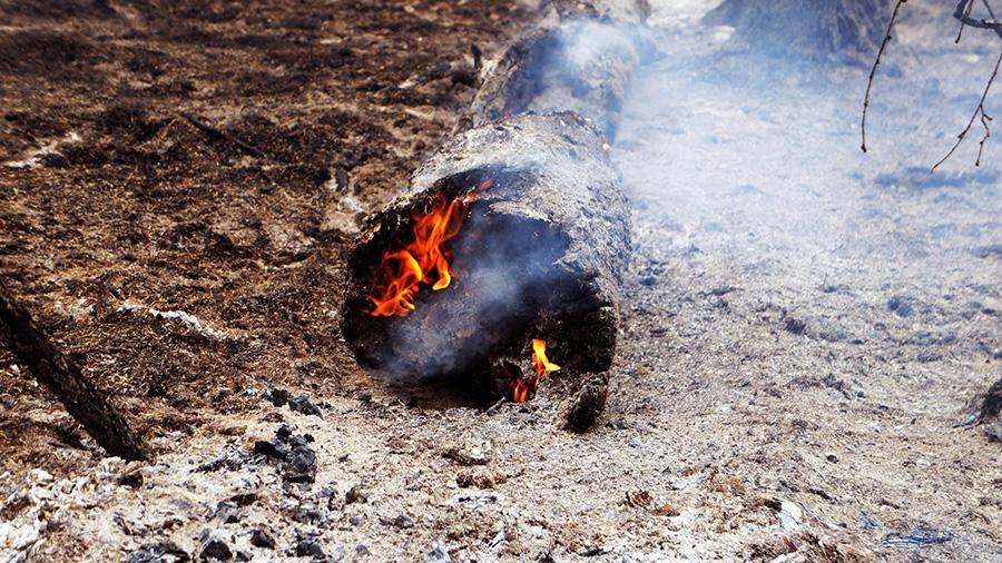 Борьба с лесным пожаром на 15 км Вилюйского тракта