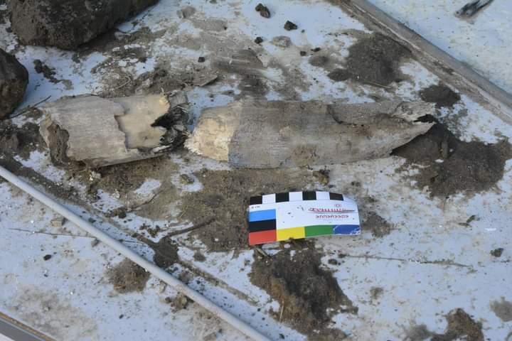 Подробности о найденных в Хангаласском районе Якутии останках ископаемых животных