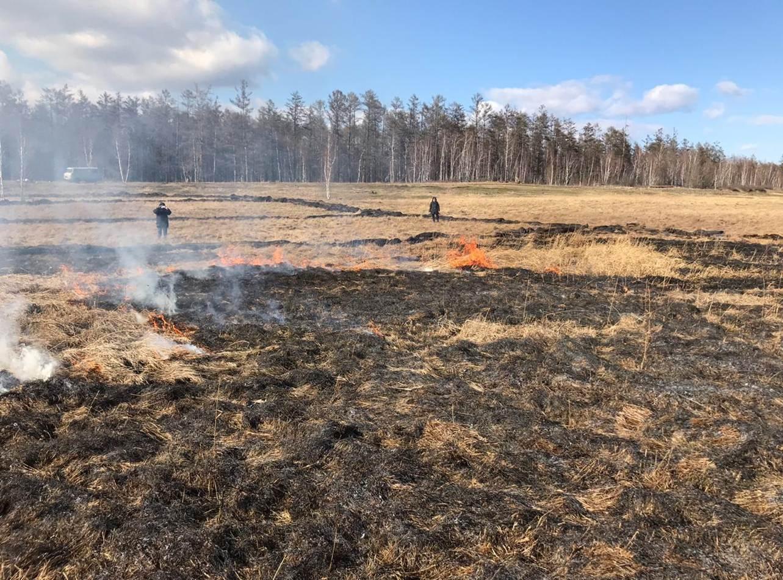 Министр экологии Якутии рассказал, почему затянулись лесные пожары в регионе