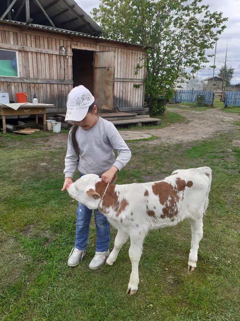 Социально-реабилитационные центры в улусах Якутии помогают семьям пережить трудное время