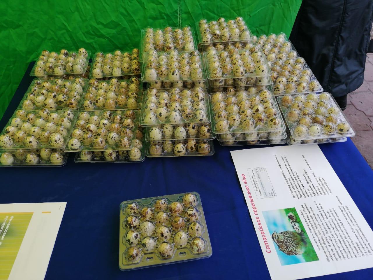 Бизнес в период пандемии. Амгинский фермер успешно реализует перепелиные яйца