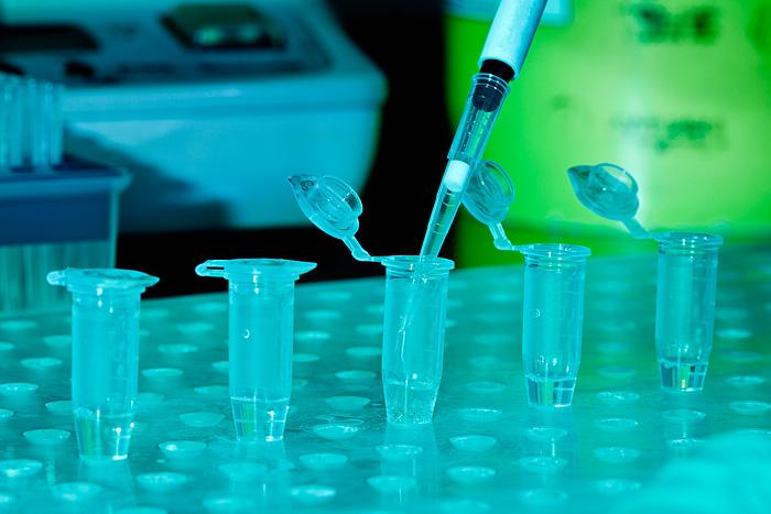 «Гемотест» приглашает якутян оформить предзаказ на ПЦР-тест