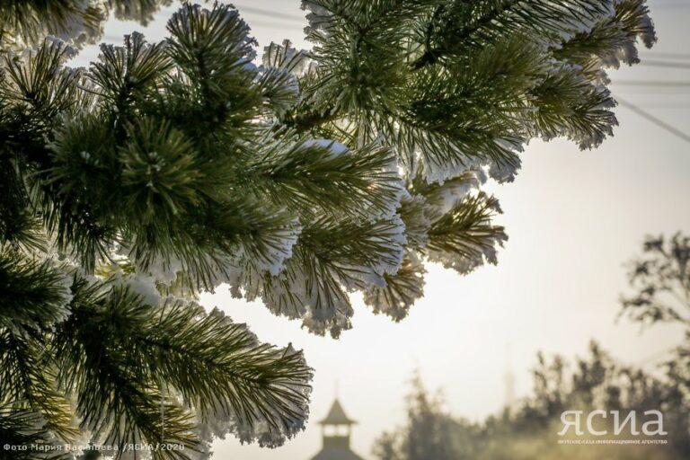Якутское УГМС: В марте в центральных районах возможно потепление до +4 градусов