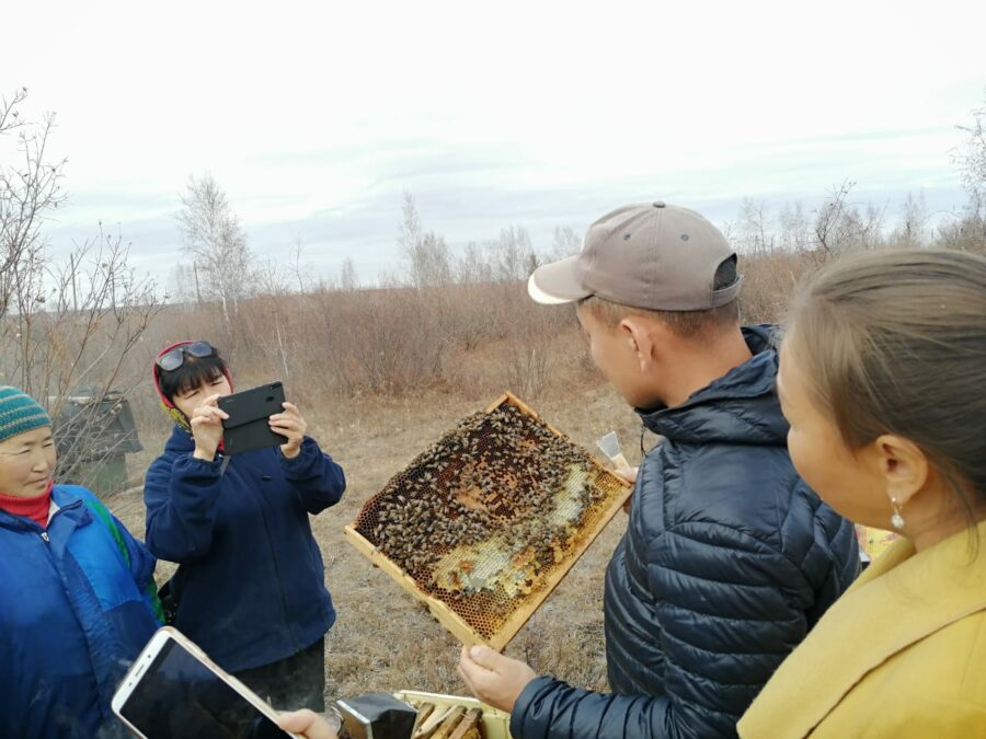 Пчеловодами стали еще шестеро амгинцев