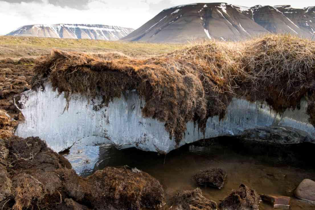 Юрий Григорьев: Изменения климата могут вызвать нестабильность вечной мерзлоты в Якутии