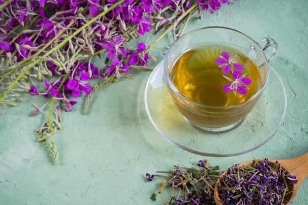 Якутскую продукцию из иван-чая планируют поставлять в Японию