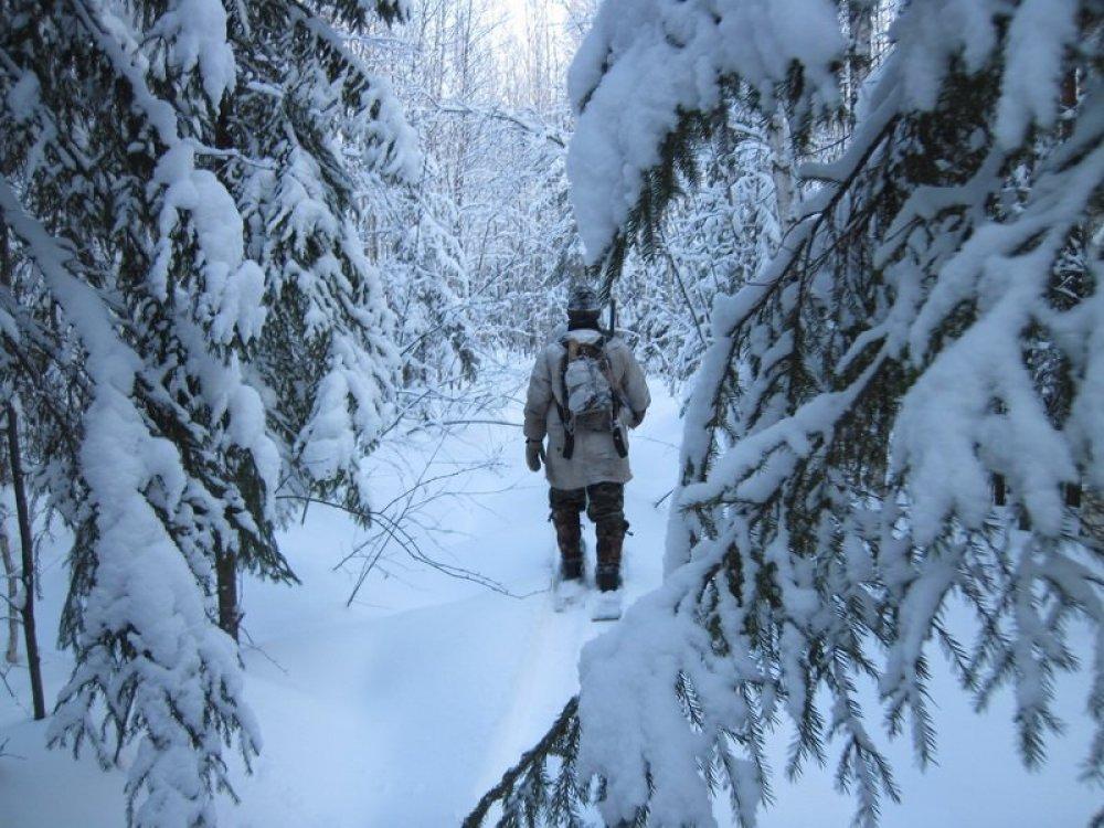 В закон об охране окружающей среды Якутии внесли изменения