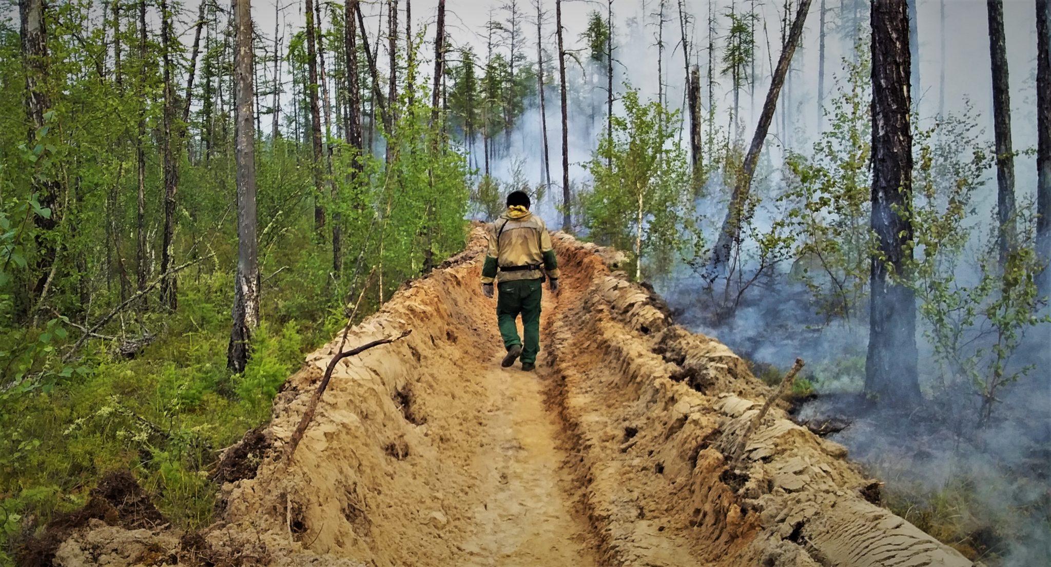 В Якутии отменен режим чрезвычайной ситуации, связанный с лесными пожарами