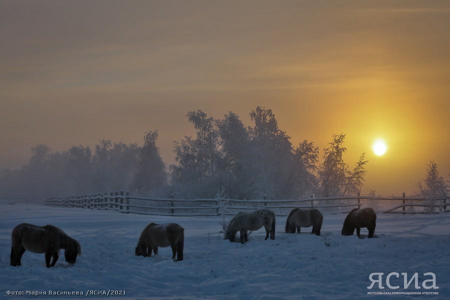ЯУГМС: Температур ниже -60 в Якутии не зафиксировано