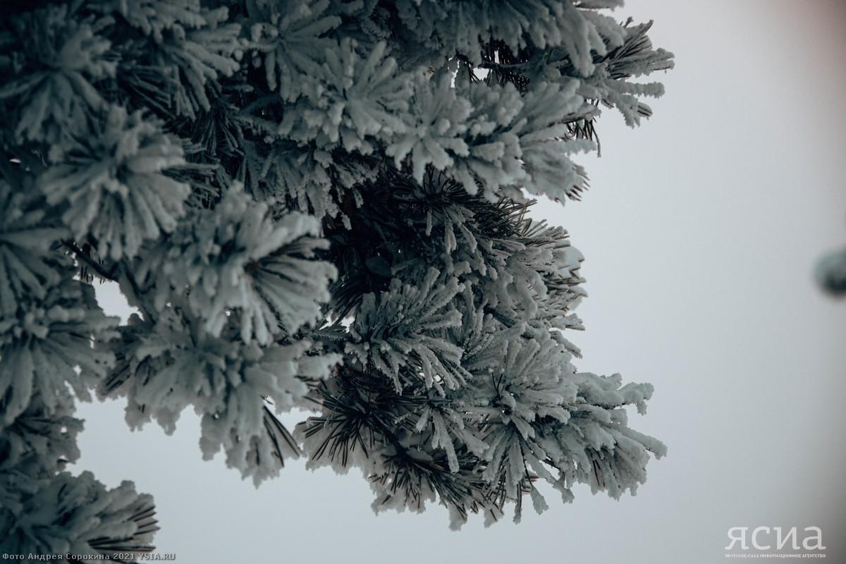 Небольшой снег, минус 38. Погода в Якутске на 1 февраля