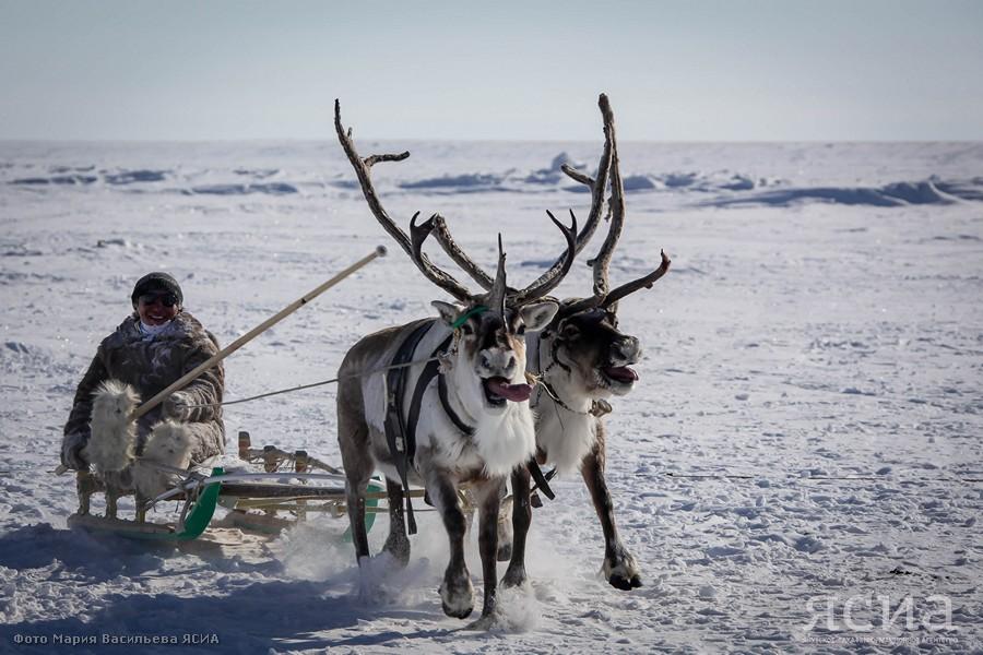 Дмитрий Фишкин: Российская Арктика - это территория жизни