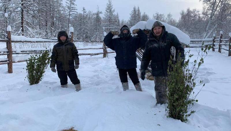К акции по подкормке косуль приглашают присоединиться жителей Якутии