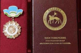 Знаки уважения. Какие государственные награды за воспитание детей есть в Якутии