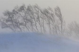 Синоптики предупредили о сильном ветре в ряде районов Якутии