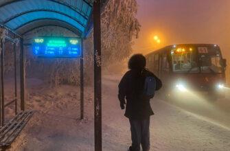 В Госдуме напомнили об ответственности за принудительную высадку детей из транспорта