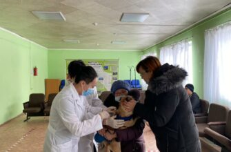 За день в Якутске привили 977 кошек и собак