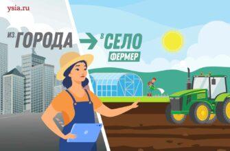 """Стартует спецпроект """"Из города в село"""": Журналист становится фермером"""