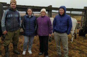 Томпонский фермер Валентина Гермогенова: Благодаря гранту «Агростартап» занимаемся разведением якутского скота