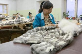 Эксперт оценил потенциал туризма в Арктике и привел пример Якутии