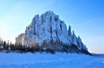 На территории Ленских столбов проводят зимний маршрутный учет диких животных