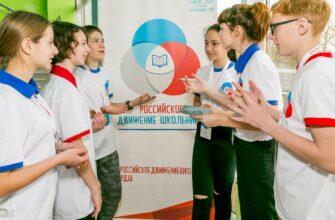 Правительство выделит 4,8 млрд рублей на образовательные проекты