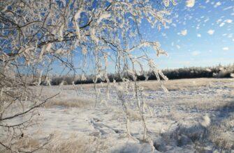 Это нестандартно и удивительно. В Якутске погодные аномалии в марте достигают 12 градусов