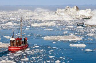 Какие страны будут осваивать арктические богатства в ближайшем будущем