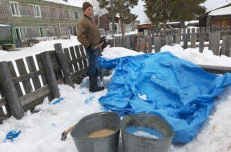 Специалисты ветуправления Вилюйского улуса помогли одиноким пожилым людям в уборке снега