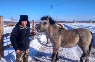 День коневода-табунщика впервые отметили в Верхоянском улусе Якутии