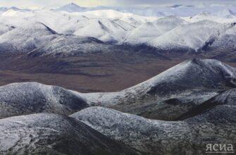В Якутии снимут фильм о защите и сохранении природы