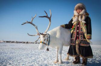 В России хотят создать Арктический союз женского предпринимательства