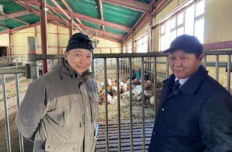 Мини-комбикормовый завод откроется в Чурапчинском районе