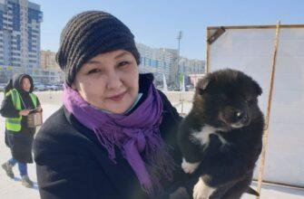 В Якутске проходит выставка охотничьих пород собак