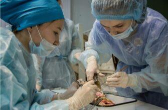 Более 260 целевых мест на подготовку медиков выделили в вузах и колледжах Якутии