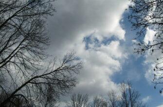 Облачно, дождь и до +10 градусов днем. Прогноз погоды на неделю