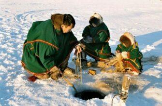Коренным малочисленным народам и их общинам распределили квоты на вылов рыбы в Якутии