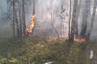 Население Чурапчинского улуса призвали соблюдать требования пожарной безопасности