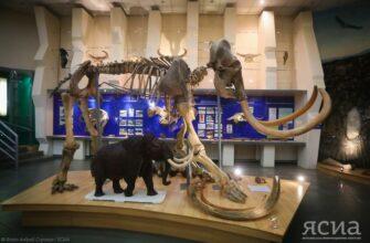 Саха(Якутия)стат: Самым популярным среди туристов в Якутии является музей мамонта