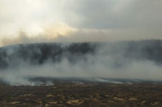 На территории Якутии действует 3 природных пожара