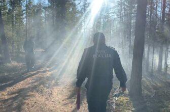 На территории Якутии действуют девять природных пожаров