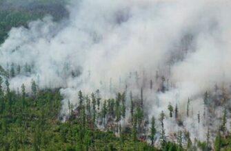 В Якутии из-за лесных пожаров введен режим чрезвычайной ситуации