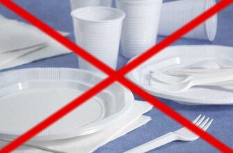 Россия будет жить без одноразовой посуды и ватных палочек
