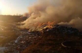 В Усть-Алданском районе Якутии произошел пожар на мусорном полигоне